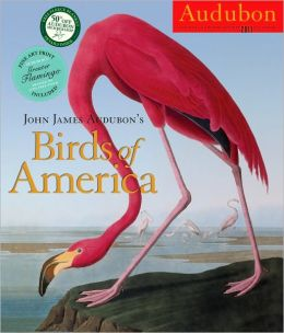 2011 John James Audubon's Birds of America Wall Calendar