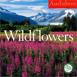 2011 Wildflowers Wall Calendar