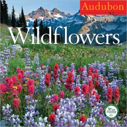 2012 Audubon Wildflowers Wall Calendar