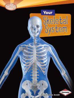 Your Skeletal System