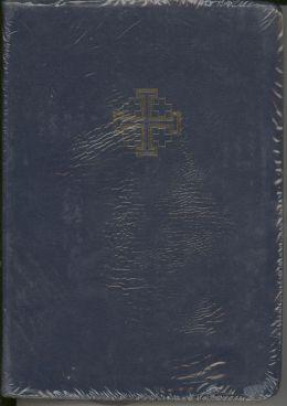 Santa Biblia Bilingue
