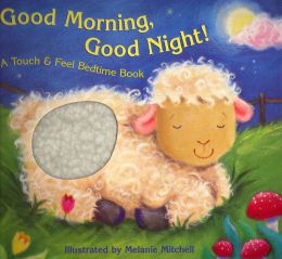 Good morning, good night!: a touch &; feel bedtime book