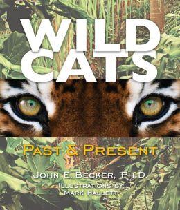 Wild Cats: Past & Present