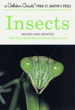 Insects: A Golden Guide from St. Martin's Press