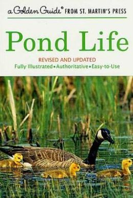 Pond Life: Revised and Updated