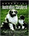 Essential Australian Shepherd