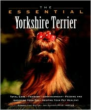 Essential Yorkshire Terrier