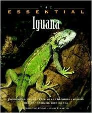 Essential Iguana