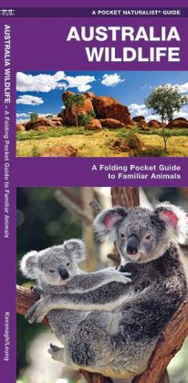Australian Wildlife: An Introduction to Familiar Species