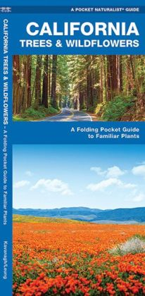 Pocket Naturalist: California Trees and Wildflowers: An Introduction to Familiar Species
