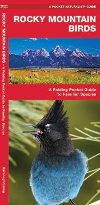 Rocky Mountain Birds: An Introduction to Familiar Species