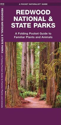 Pocket Naturalist: Redwood National Park
