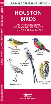 Houston Birds: An Introduction to Familiar Species of the Upper Texas Coast