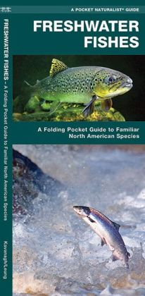 Freshwater Fishes: An Introduction to Familiar North American Species