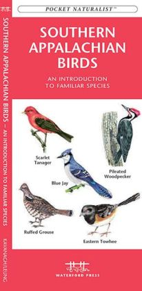 Southern Appalachian Birds: An Introduction to Over 140 Familiar Species (Pocket Naturalist Series)