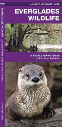 Everglades Wildlife: An Introduction to Familiar Species (Pocket Naturalist Series)