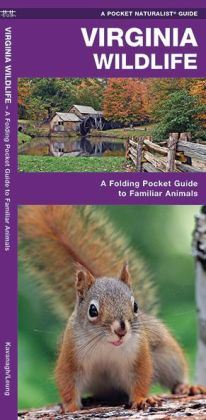 Virginia Wildlife: An Introduction to Familiar Species