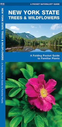 New York State Trees and Wildflowers: An Introduction to Familiar Species