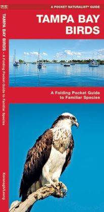 Tampa Bay Birds: An Introduction to Familiar Species of Tampa Bay, Florida