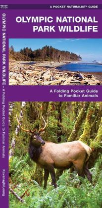 Olympic National Park Wildlife: An Introduction to Familiar Species