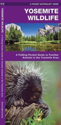 Pocket Naturalist Guide to Yosemite Wildlife: An Introduction to Familiar Species of the Yosemite Area