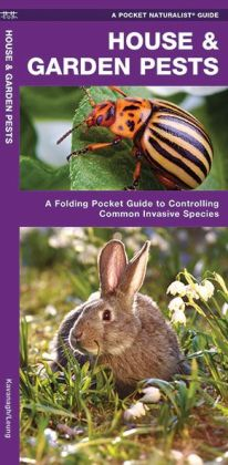 House & Garden Pests