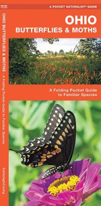 Ohio Butterflies and Moths: An Introduction to Familiar Species (Pocket Naturalist Series)
