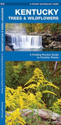 Kentucky Trees and Wildflowers: An Introduction to Familiar Species
