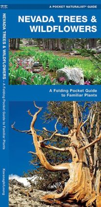 Nevada Trees and Wildflowers: An Introduction to Familiar Species