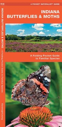 Indiana Butterflies and Moths: An Introduction to Familiar Species