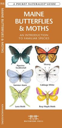Maine Butterflies and Moths: An Introduction to Familiar Species