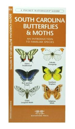 South Carolina Butterflies and Moths: An Introduction to Familiar Species