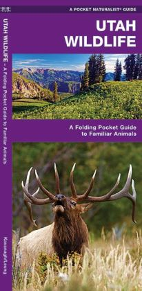 Pocket Naturalist Guide to Utah Wildlife: An Introduction to Familiar Species