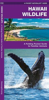 Pocket Naturalist Guide to Hawaii Wildlife: An Introduction to Familiar Species