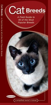 Cat Breeds: An Introduction to 40 Popular Breeds