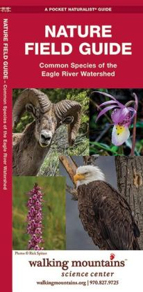 Nature Field Guide: Common Species of the Eagle River Watershed