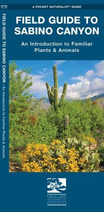 Field Guide to Sabino Canyon: An Introduction to Familiar Plants & Animals