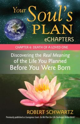 Your Soul's Plan eChapters - Chapter 6: Death of a Loved One: Discovering the Real Meaning of the Life You Planned Before You Were Born