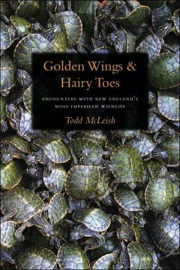 Golden Wings and Hairy Toes: Encounters with New England's Most Imperiled Wildlife