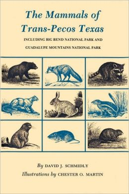 Mammals of Trans-Pecos Texas: Including Big Bend National Park and Guadalupe Mountains National Park