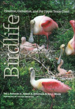 Birdlife of Houston, Galveston, and the Upper Texas Coast
