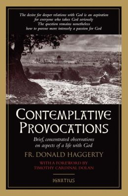 Contemplative Provocations