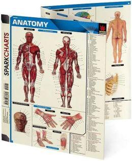 General Anatomy (SparkCharts)