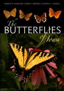 Butterflies of Iowa