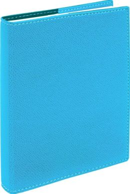 2014 DAILYDESK TURQUOISE CLUB STUDENT PLANNER