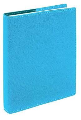 2015 Daily Desk Club Student Planner Textagenda (Turquoise Color)