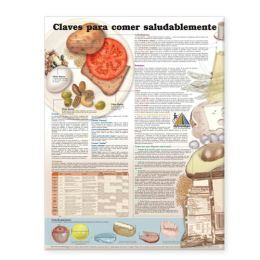 Keys to Healthy Eating Anatomical Chart in Spanish (Claves Para Una Alimentacion Saludable)