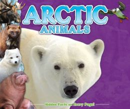 Artic Animals (Fun Facts for Kids Series)