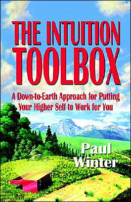 The Intuition Toolbox: A Down-to-Earth Approach for Putting Your Higher Self to Wrok for You