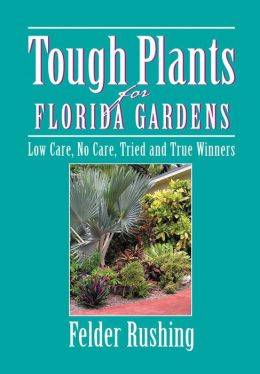 Tough Plants for Florida Gardens